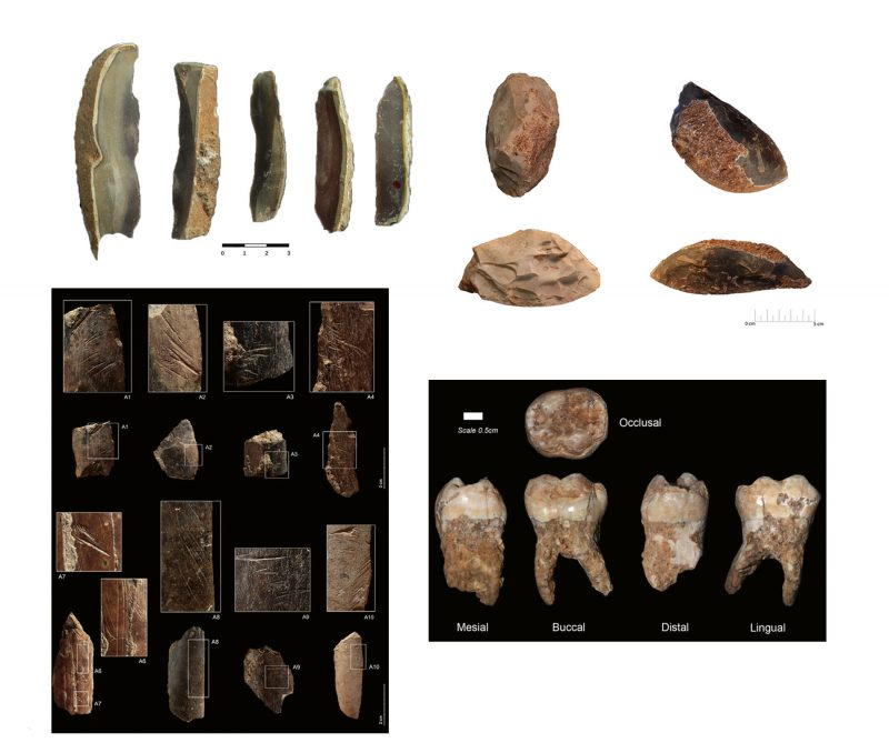 Examples of Qesem Cave findings