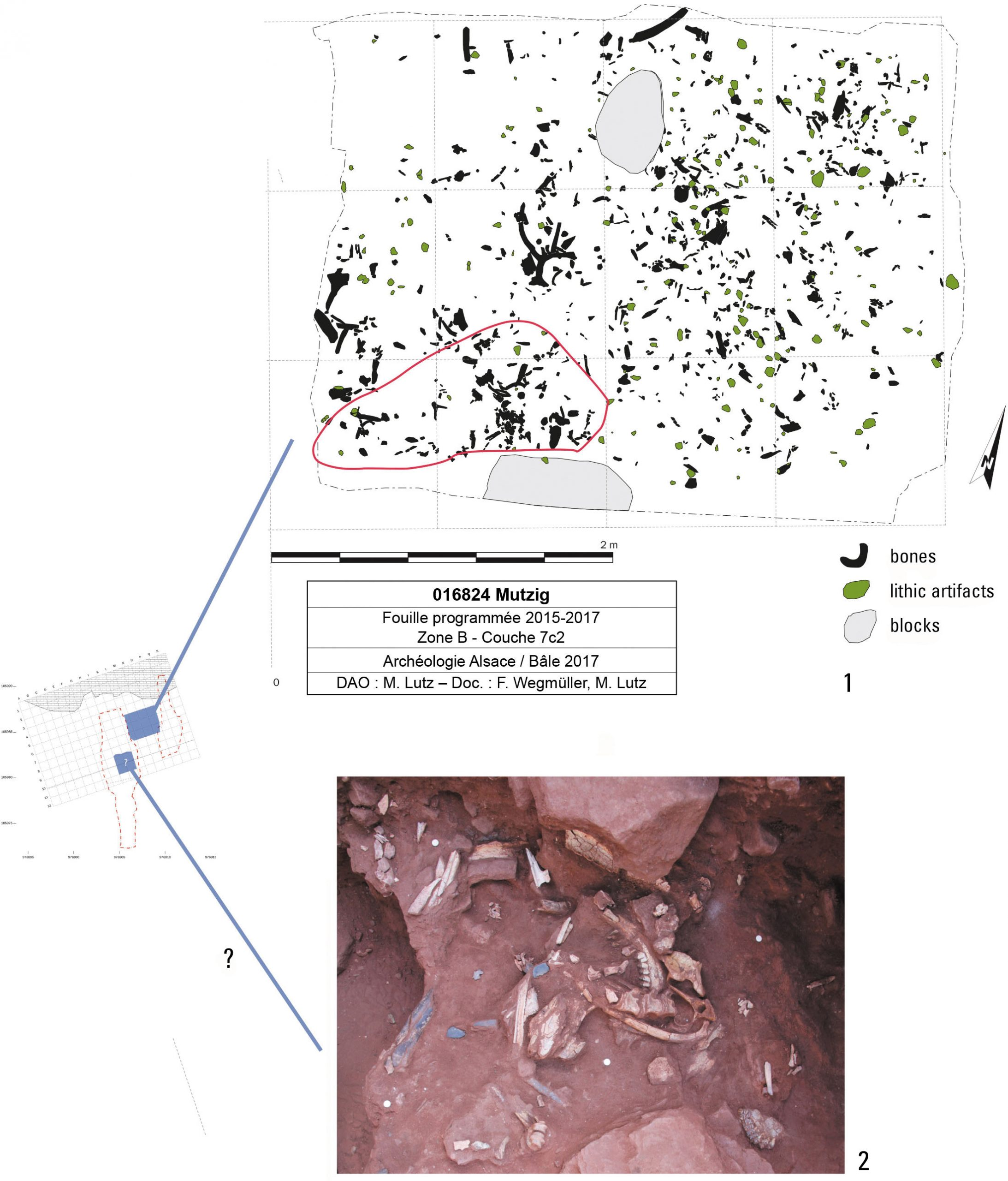 Spatial distribution of remains in Layer 7C2