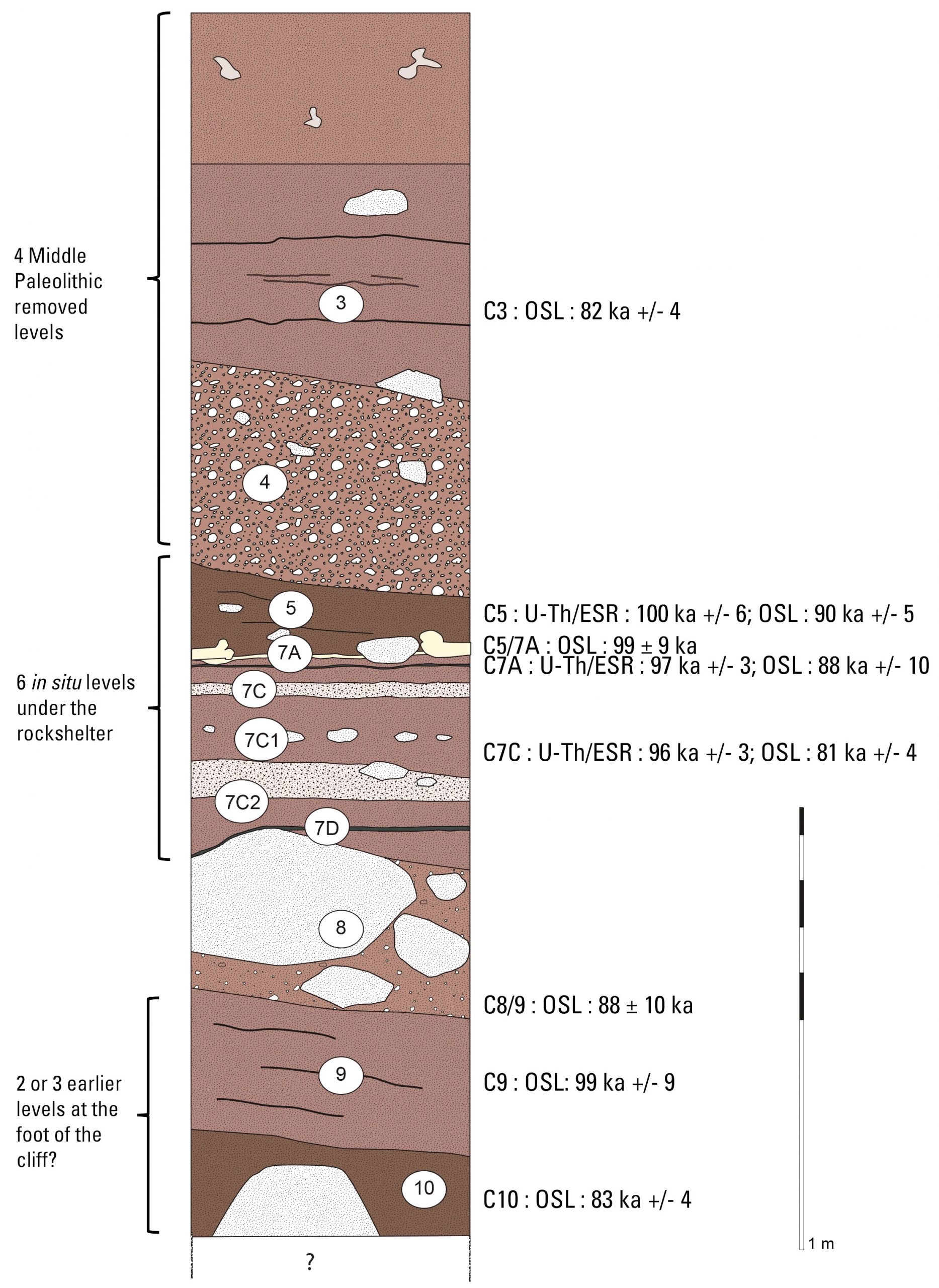 Synthetic stratigraphic section