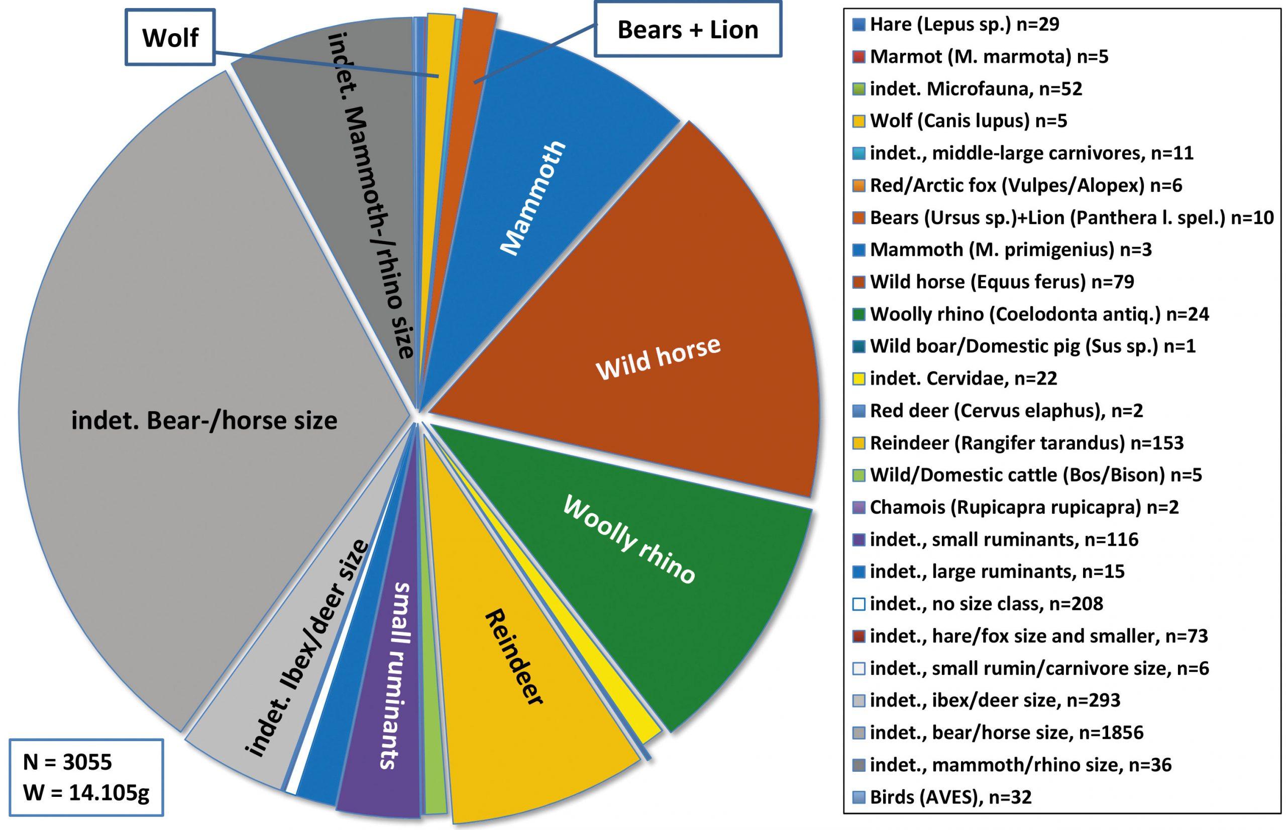 Pie chart of fauna by bone weight