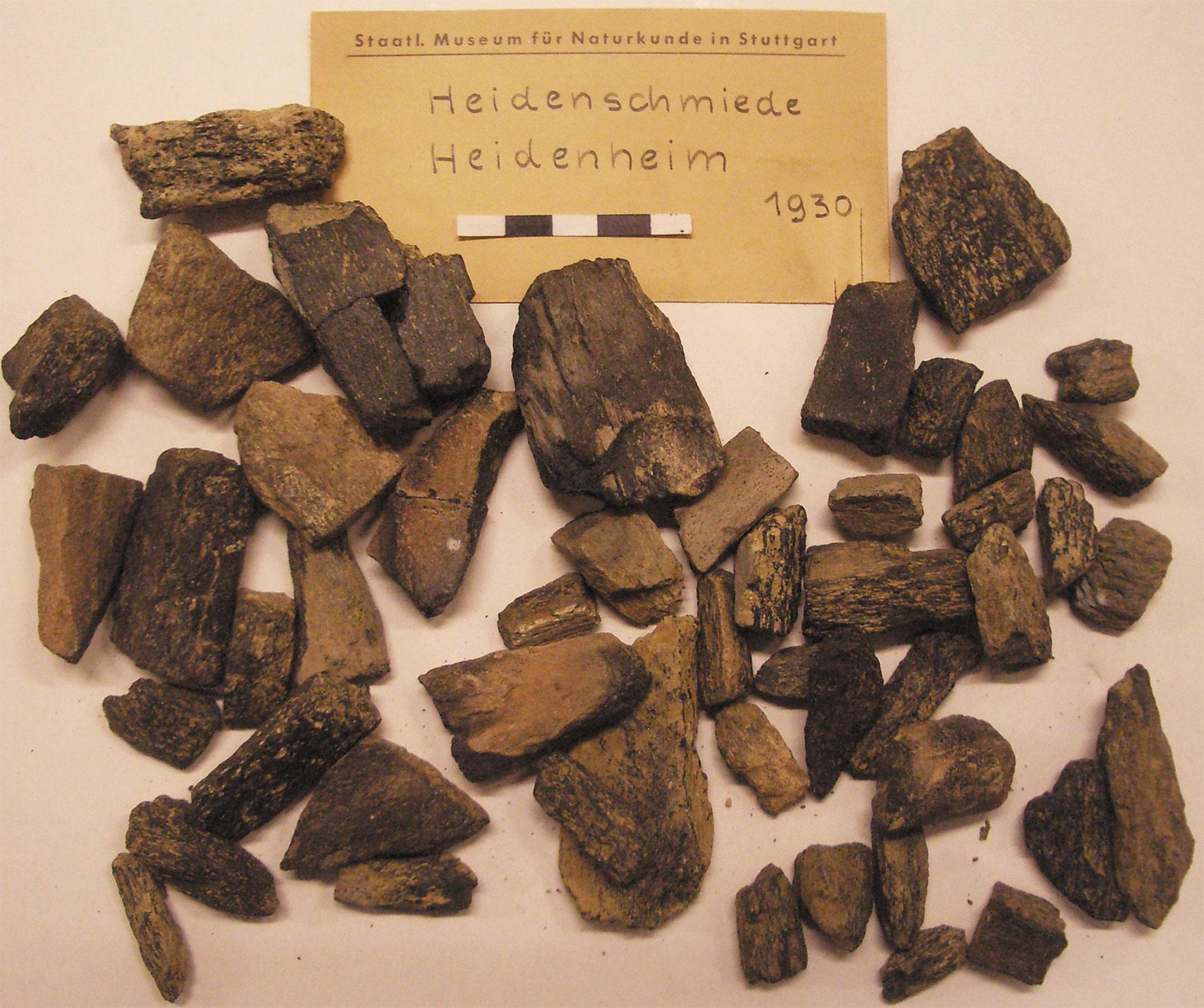 Charred bone pieces