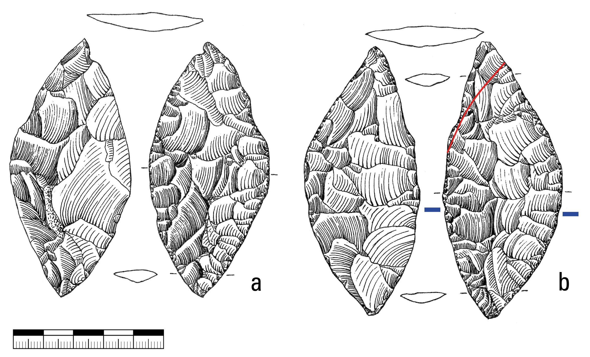 Haldensteinhöhle, Zeichnung von Blattspitzen